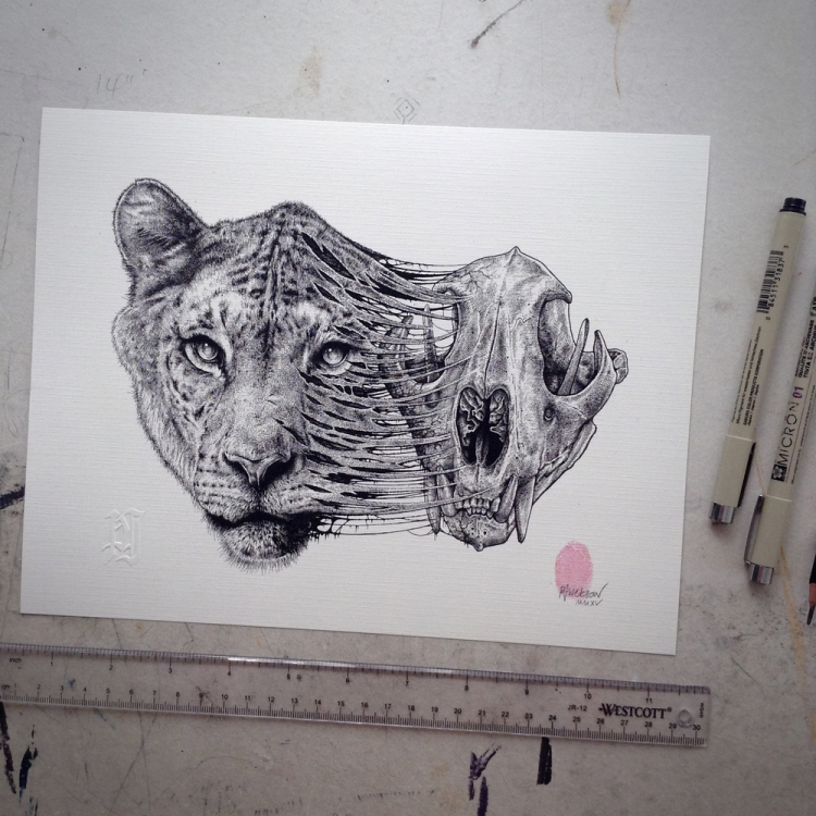 Lioness and Skull