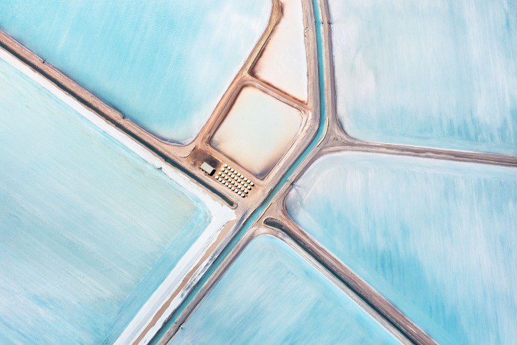 blue fields 1