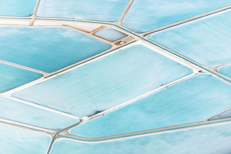 blue fields 5