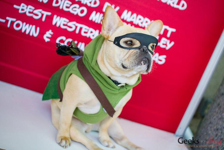 Green Arrow Dog