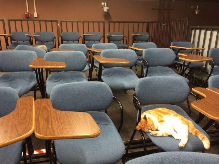Bubba Empty Class