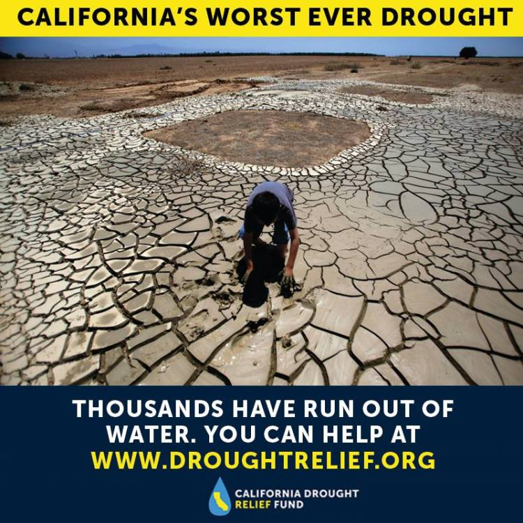 Drought Relief