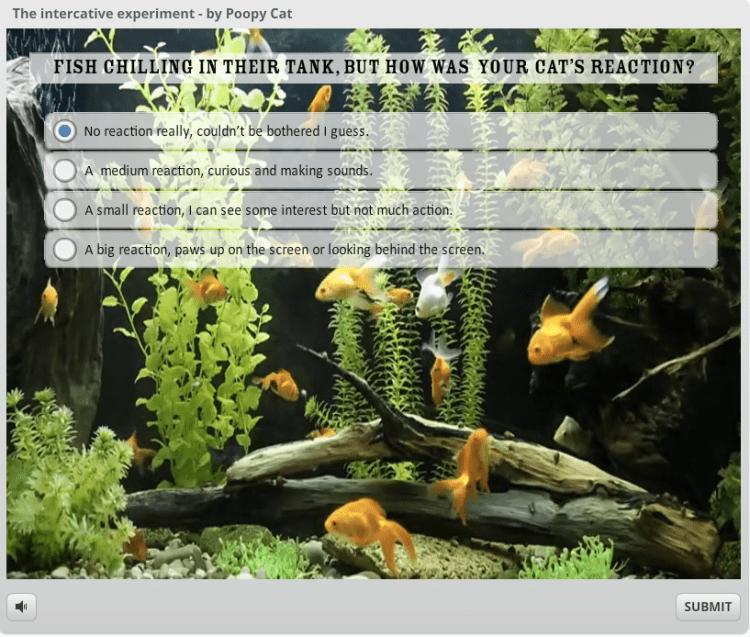Intercative Fish