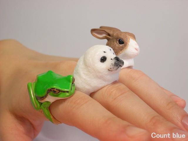 RabbitSealFrog