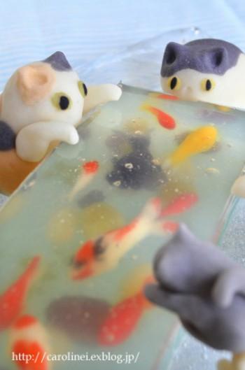 CatFish Close2