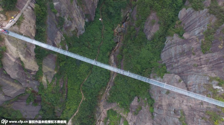 Glass Suspension Bridge Overhead
