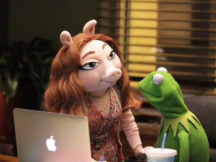 Kermit the Frog's New Girlfriend Denise