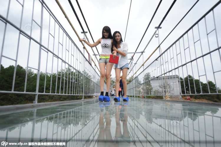 Tourists Walking on Glass Suspension Bridge