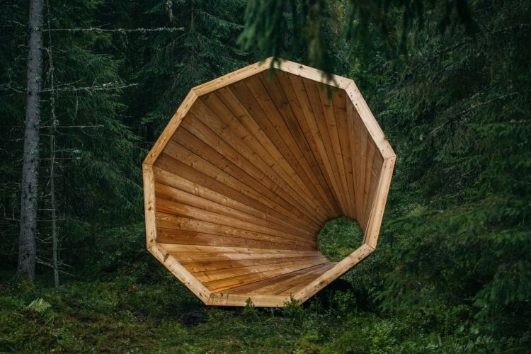 Wooden Megaphone in Forest