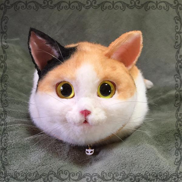 Calico Face