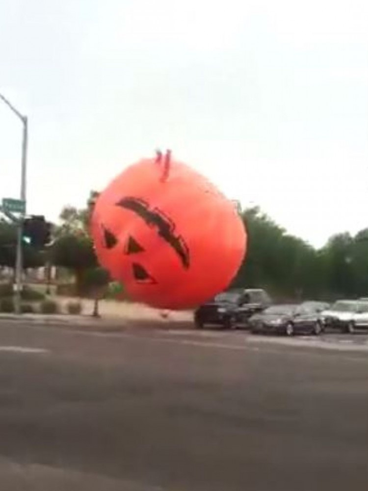 Giant Bouncing Pumpkin