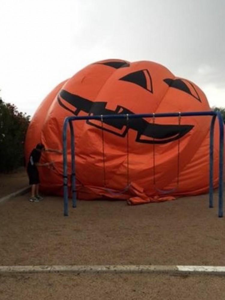 Pumpkin Stuck at the Park