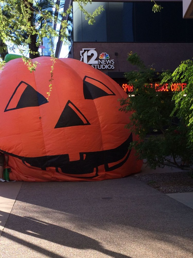 Pumpkin at 12 News
