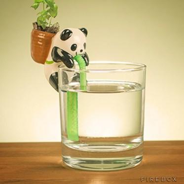 Self Watering Panda