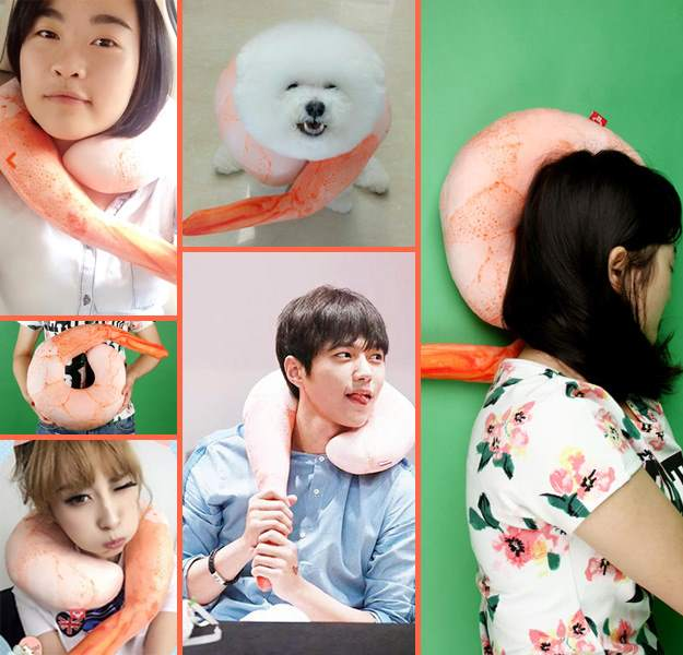 people and dogs enjoy the shrimp neck pillow