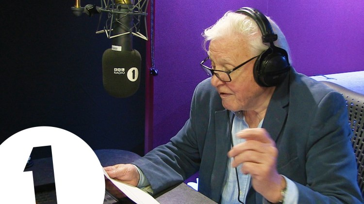 Sir David Attenborough Provides Wonderful Narration for Adele's New 'Hello' Music Video