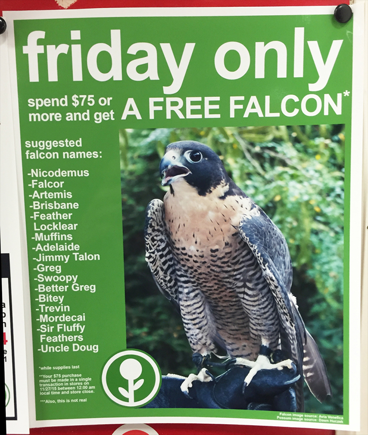 Fake Black Friday Deals