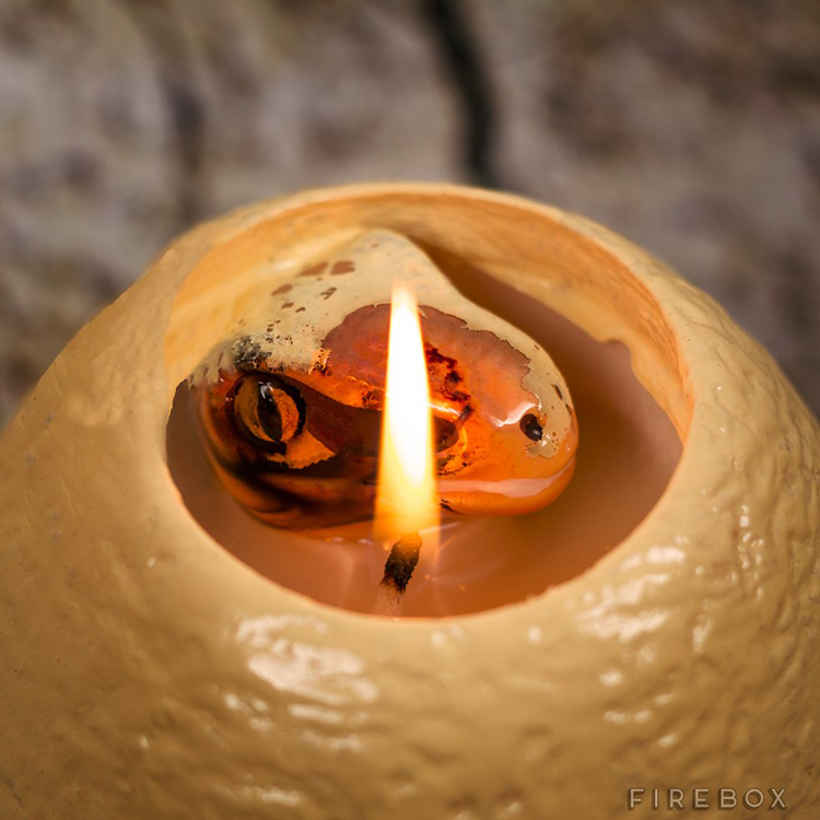 Hatching Dinosaur Candle