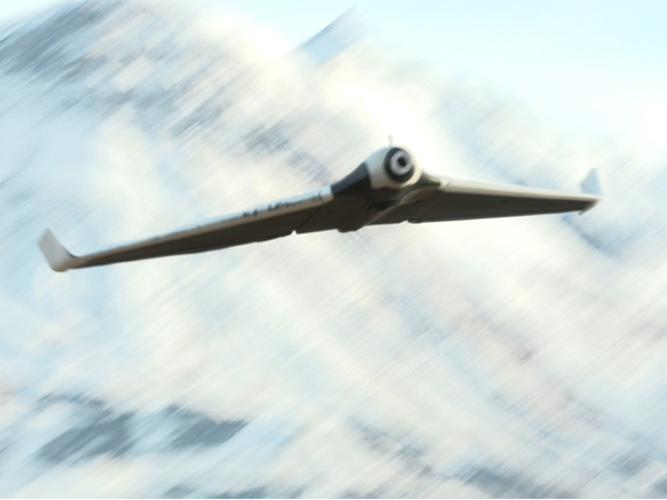 Parrot Disco in Flight