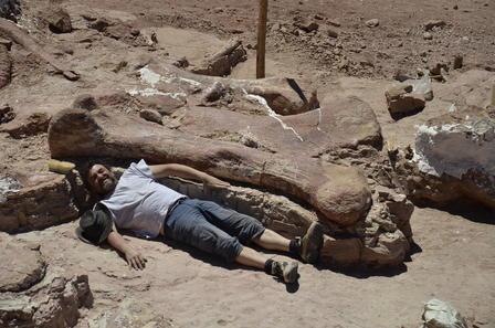 paleontologist with titanosaur bone