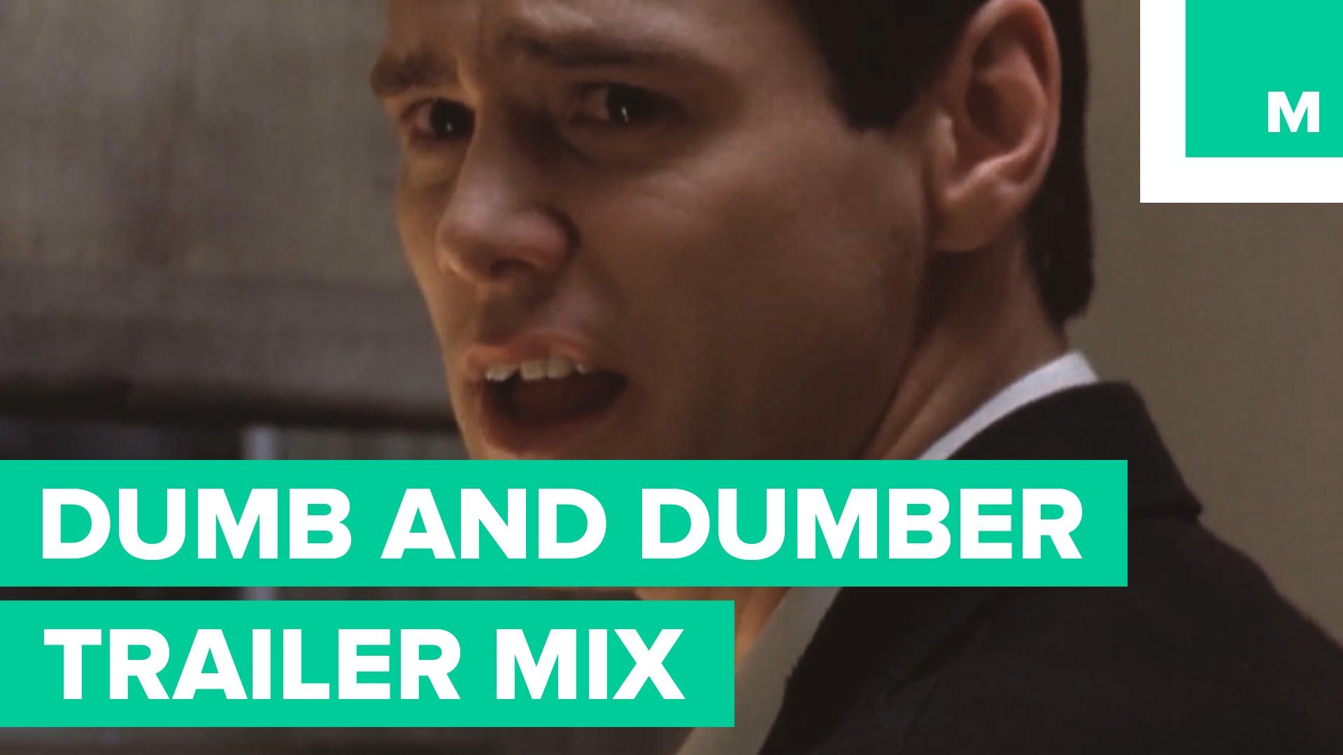 Dumb and dumber 1994 youtube