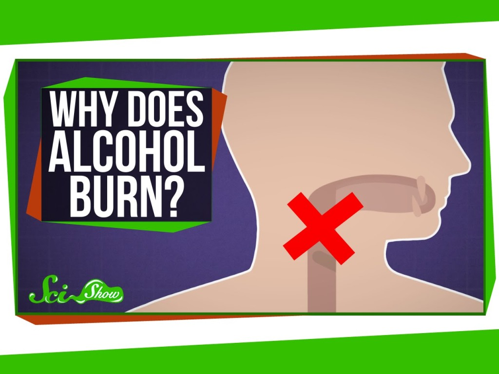 Why Alcohol Burns When You Drink It