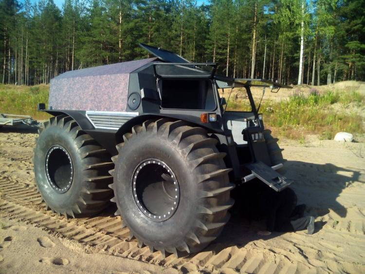 Black Sherp on Sand