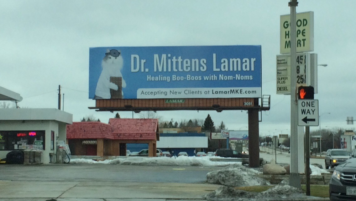 Feline Physician Dr. Mittens Lamar Heals Boo-Boos With Nom-Noms