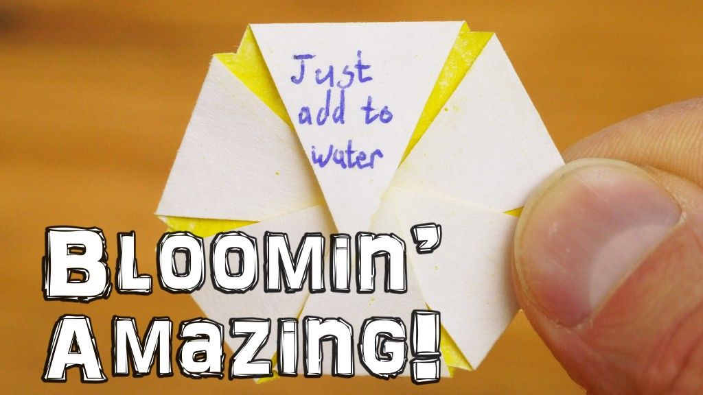 How to Make Blooming Paper Flowers That Open When You Add Them to Water