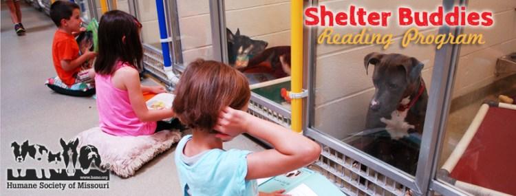 shelter-buddies-reading