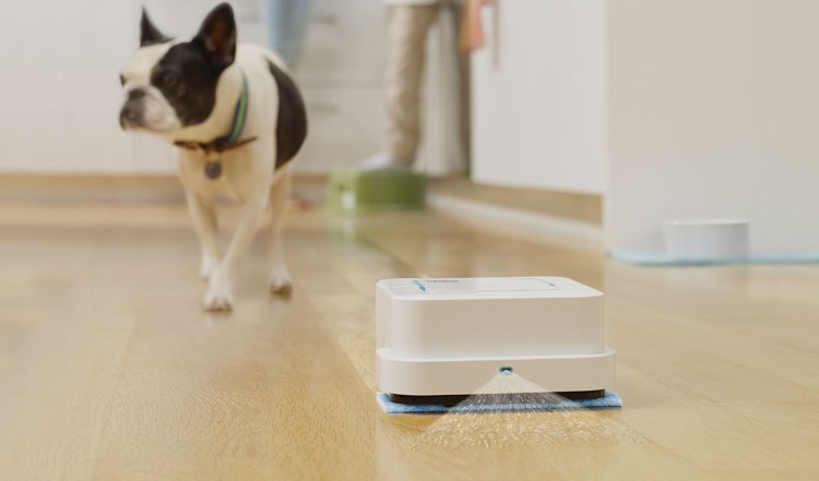 iRobot Braava Jet and Dog