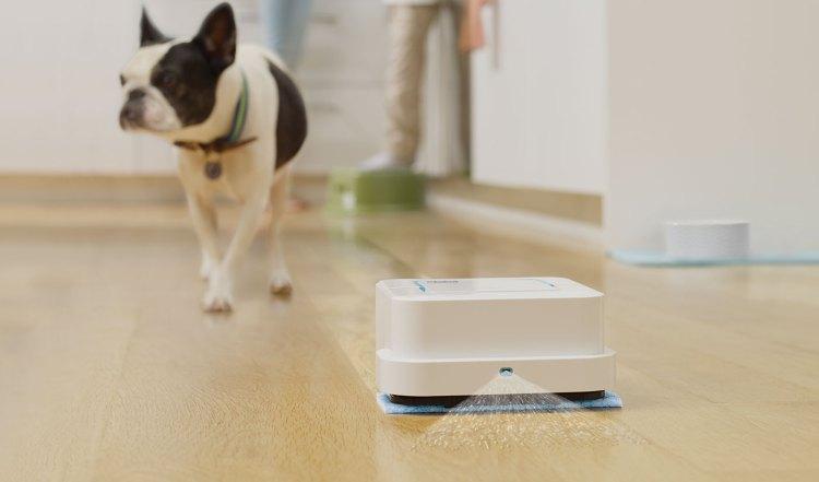 iRobot Braava Jet and Dog