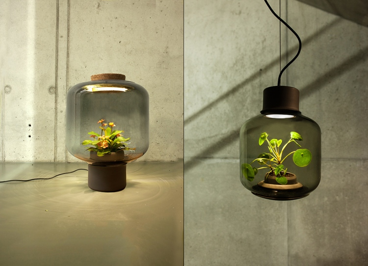 Innovative Led Lights With Plants Inside That Thrive In