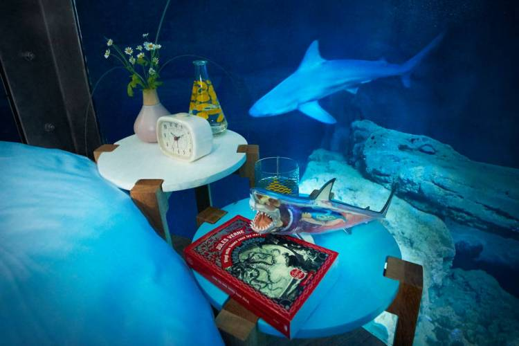 Airbnb Shark Nightstand