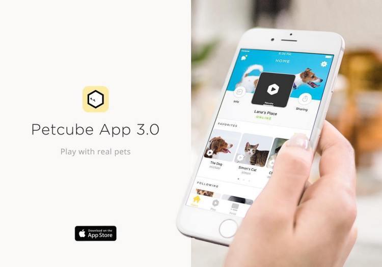 Petcube App 3