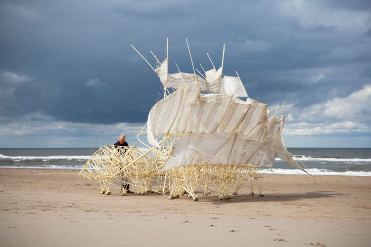 Artist Theo Jansen Walks His Magnificent Kinetic Strandbeests Along the Beach in San Francisco