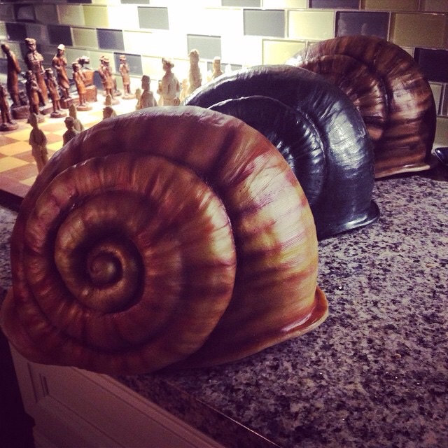 Snail Shell Helmet