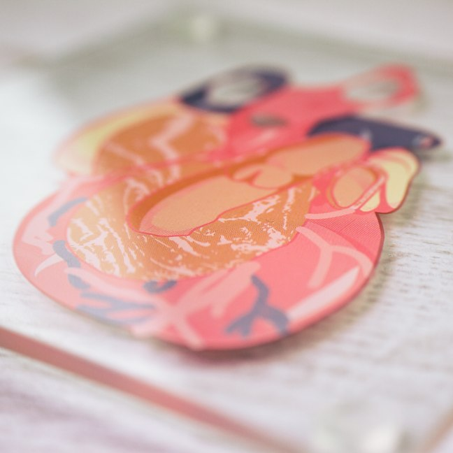 Heart Anatomy Coasters Up Close