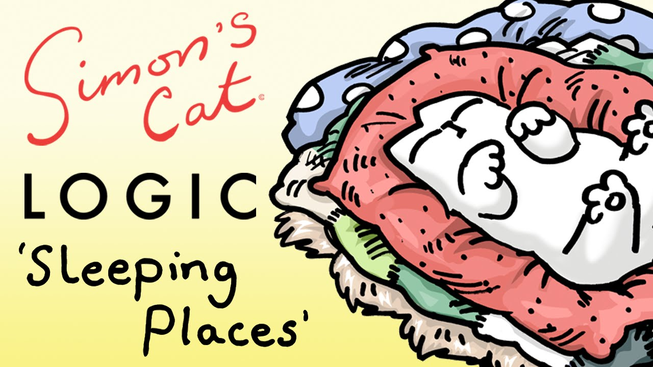 Simon's Cat Logic Explains Why Cats Choose Such Unusual Places to Sleep