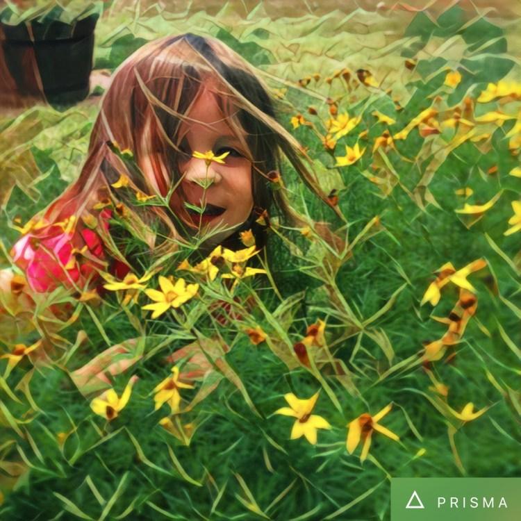 Amelia Through Prisma Dreams Filter