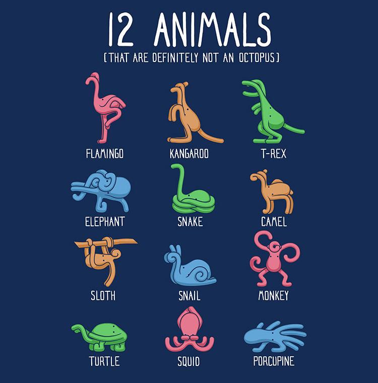 Not An Octopus