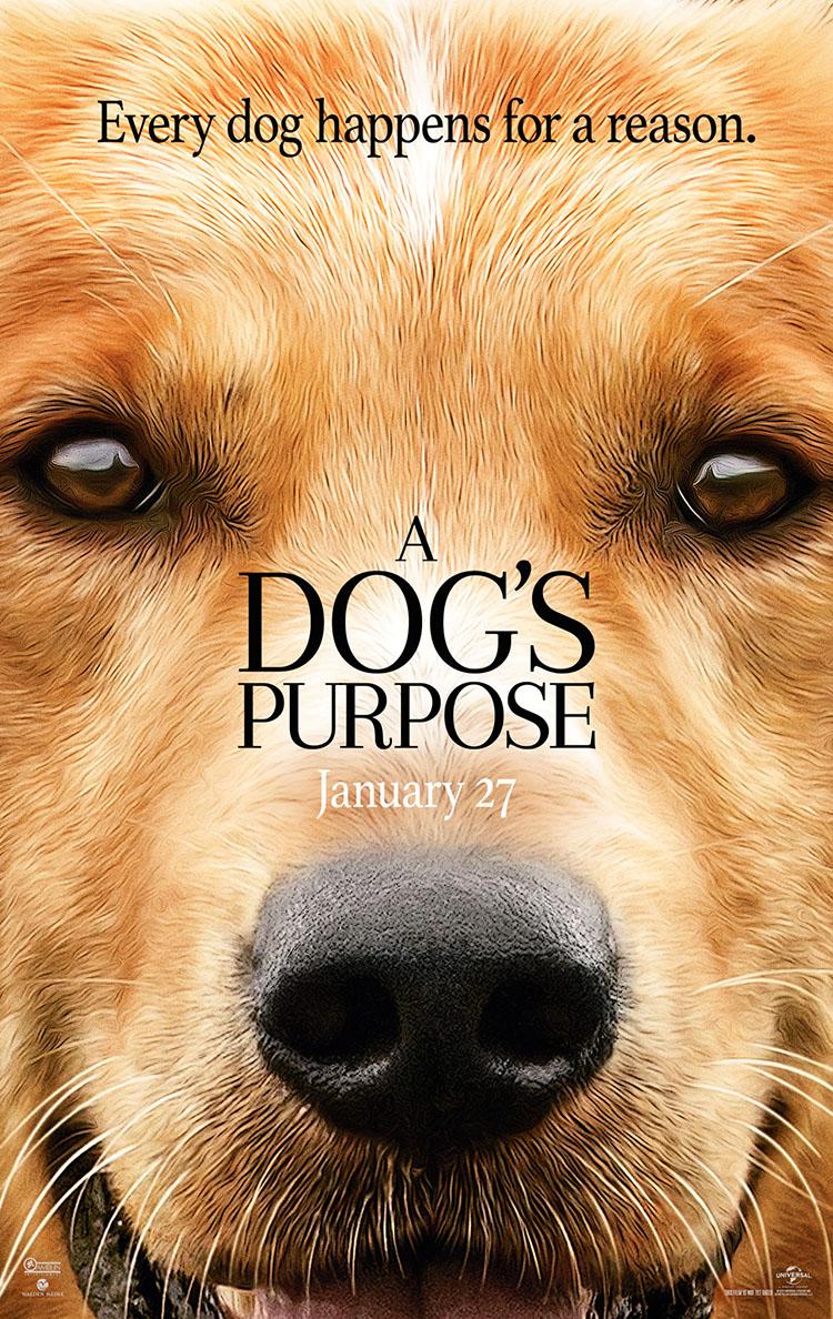 Dog Purpose