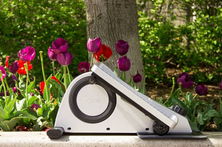 Cubii and Flowers