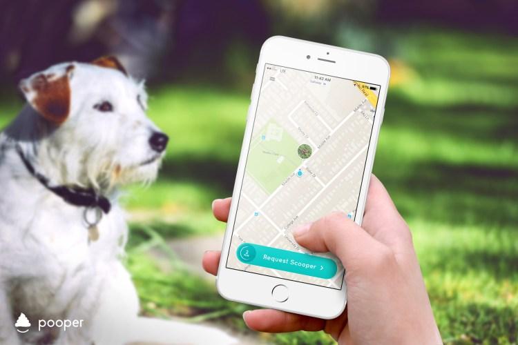Pooper App and Dog