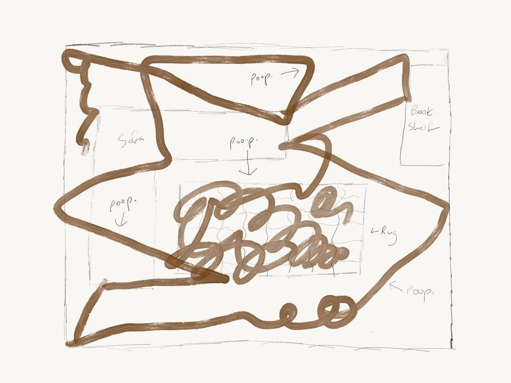 Roomba Poop Map