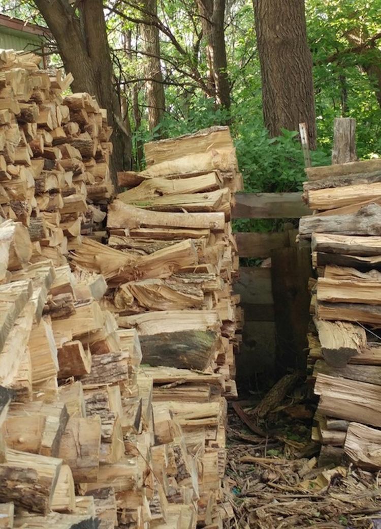 Tabby Wood