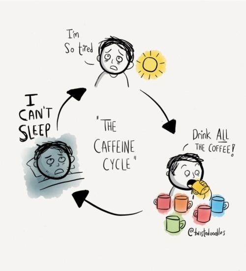 The Caffeine Cycle