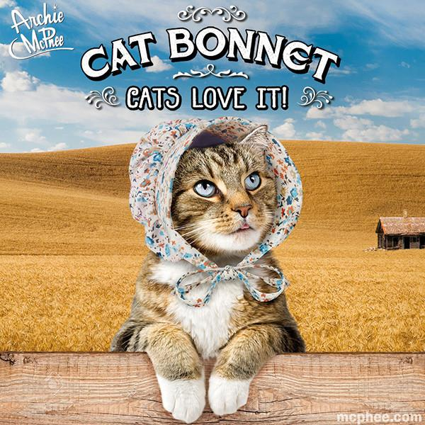 cat-bonnet-tabby