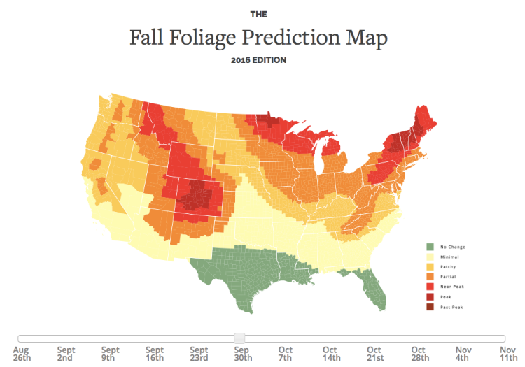 An Interactive Map That Predicts the Best Time for Fall 2016 Foliage on