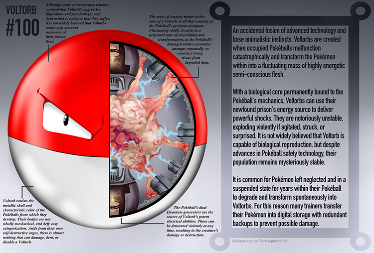 Voltorb Anatomy